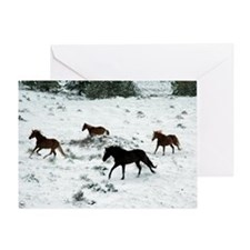 snowrun_Lg_framed Greeting Card