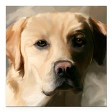 "9x12YellowLab Square Car Magnet 3"" x 3"""