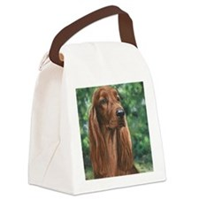 Irish_Setter_M1 Canvas Lunch Bag