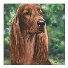 "Irish_Setter_M1 Square Car Magnet 3"" x 3"""