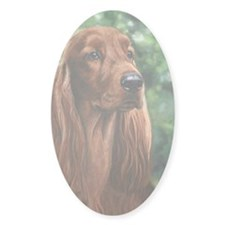 Irish_Setter_M1 Decal