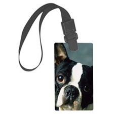 BT Portrait 3G hard caseb Luggage Tag