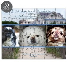 Cover2011 Puzzle