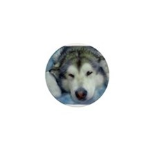 Cute Alaskan malamute Mini Button (10 pack)