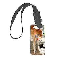 Orphaned Foal - Joy Luggage Tag