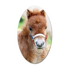 Orphaned Foal - Joy Wall Decal