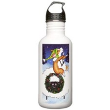 Joy To The World Water Bottle