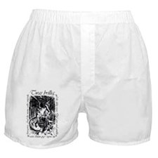 Brilling-iPhone4G-shift Boxer Shorts