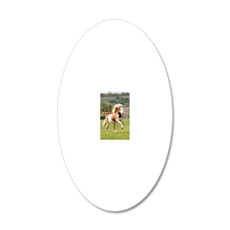 jfjbigger 20x12 Oval Wall Decal