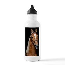 sorrel_ipad Water Bottle