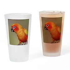 TacocalendarIMG_0002 Drinking Glass