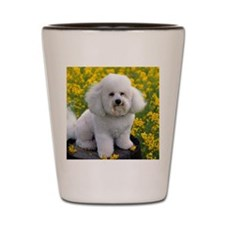 Bichon round orn Shot Glass