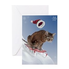 cpsled_stocking Greeting Card