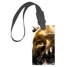 (2) Pig Profile  1966 Luggage Tag