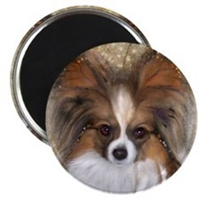 Butterfly Ears Papillon Magnet