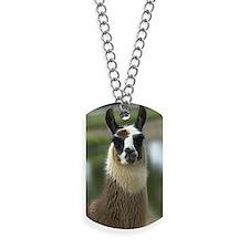 llama1_lframe Dog Tags