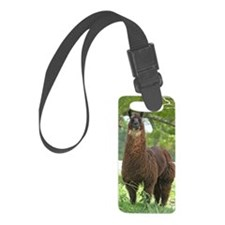 blk_llama_sticker Luggage Tag
