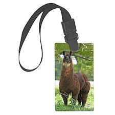 blk_llama_sticker Luggage Tag