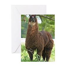 blk_llama_iphone3G Greeting Card