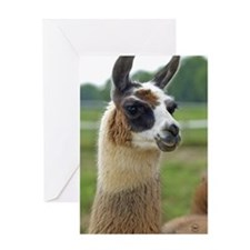 llama2_journal Greeting Card