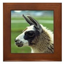 llama3_mpad Framed Tile