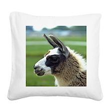 llama3_mpad Square Canvas Pillow