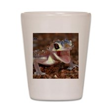 cover Shot Glass