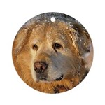 Willie Ornament (Round)