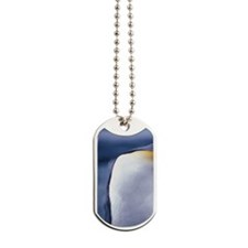 Australia, Oceania, Macquarie Island, Kin Dog Tags