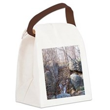 Beaver Dam Canvas Lunch Bag