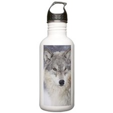 x14  Wolf Sports Water Bottle