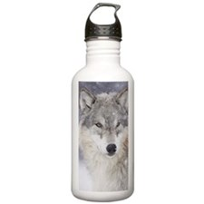x14  Wolf Water Bottle