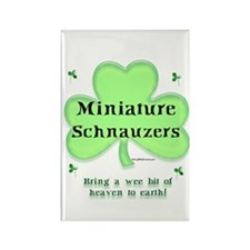 Mini Schnauzer Heaven Rectangle Magnet