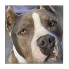 Cute Amstaff art Tile Coaster
