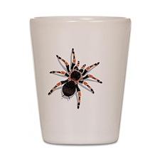 tarantula_cushion Shot Glass