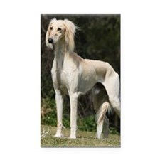 Saluki 9Y644D-026 Rectangle Car Magnet