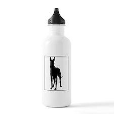 Great Dane.eps Water Bottle