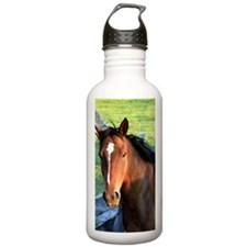 Brown horse Sports Water Bottle