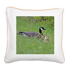 Goslings With Mom Square Canvas Pillow