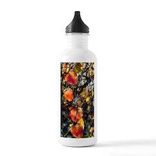 frutasbest Water Bottle