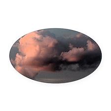 big magenta sunset Oval Car Magnet