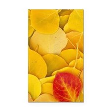 Aspen_leaves_iPhone Rectangle Car Magnet