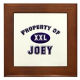 Property of joey Framed Tile