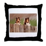 Peeking Collies Throw Pillow