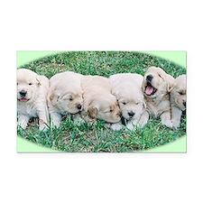 Golden Retriever Puppy Alumin Rectangle Car Magnet