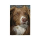 Cute Australian shepherd Rectangle Magnet (10 pack)