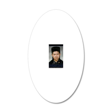DeMotivational - Howard Hair 20x12 Oval Wall Decal