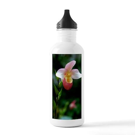 DSC_0380edit Stainless Water Bottle 1.0L