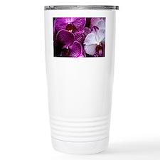 DSC_0376edit Travel Mug