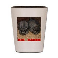 Pot_Bellied_Pigs_Big_Bacon_12by14 Shot Glass